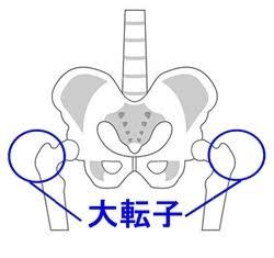 f:id:kouseistaffblog:20171219102141p:plain