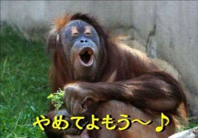f:id:koushuya:20170313004236j:plain