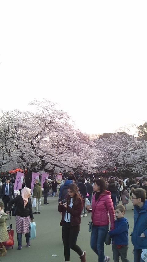 f:id:koushuya:20170406122904j:plain