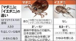 f:id:koushuya:20170728024552j:plain