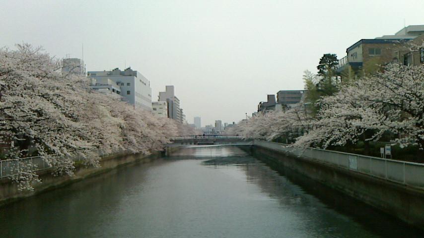 f:id:koushuya:20180401011159j:plain