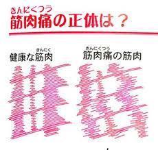 f:id:koushuya:20181113102445j:plain