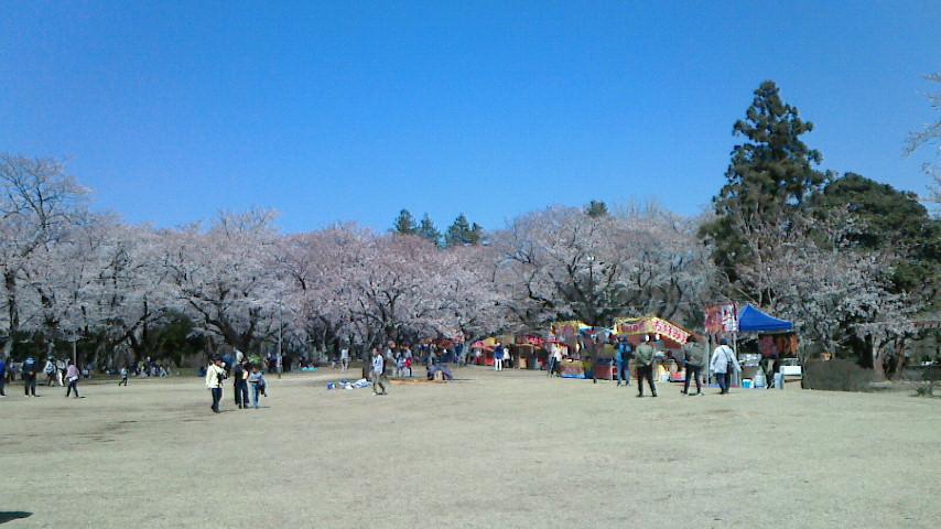 f:id:koushuya:20190405001058j:plain