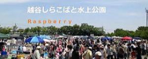 f:id:koushuya:20191112233848j:plain