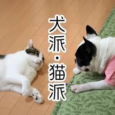 f:id:koushuya:20200621233552j:plain