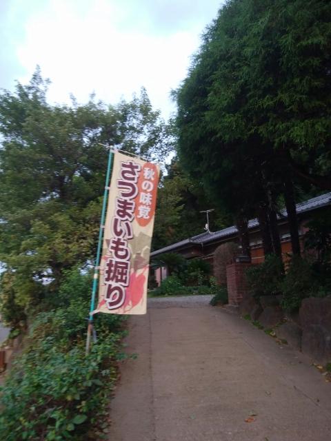 f:id:koushuya:20201009235115j:plain