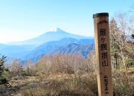 f:id:koushuya:20201119000043j:plain