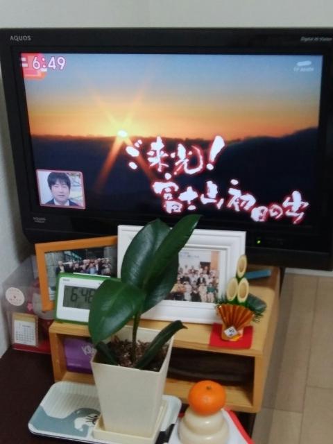 f:id:koushuya:20210103093546j:plain