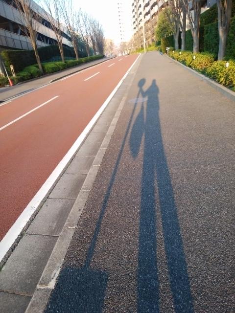 f:id:koushuya:20210326000652j:plain