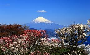 f:id:koushuya:20210406075025j:plain
