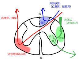 f:id:koushuya:20210424035010j:plain