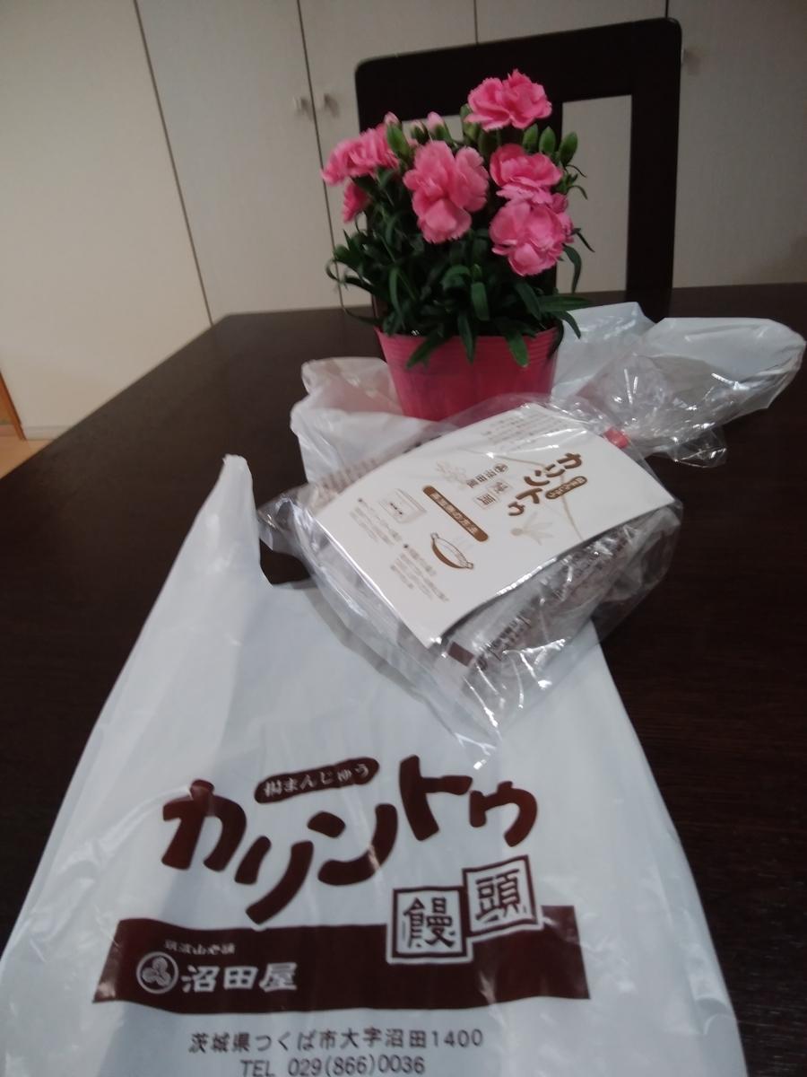 f:id:koushuya:20210506002056j:plain