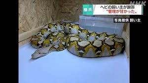 f:id:koushuya:20210513235917j:plain