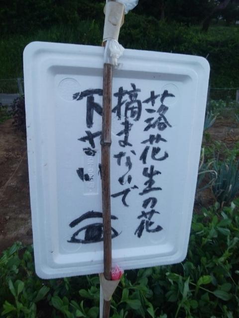 f:id:koushuya:20210725001812j:plain
