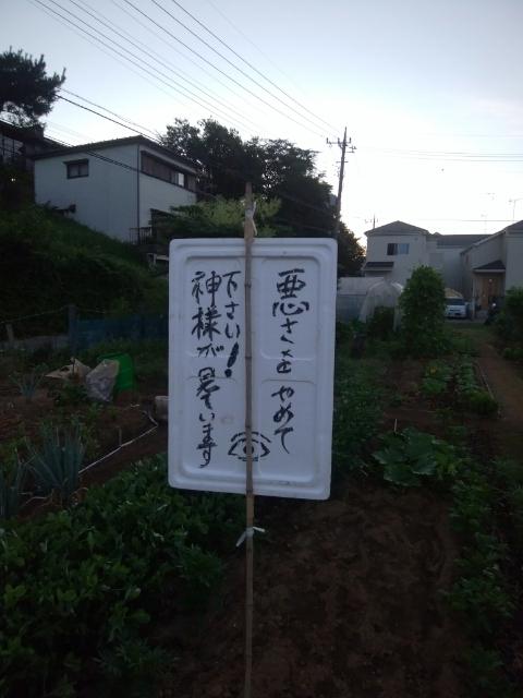 f:id:koushuya:20210725001859j:plain