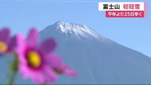 f:id:koushuya:20210913062926j:plain