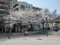 JR灘駅の桜