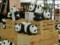 1600頭のパンダ3