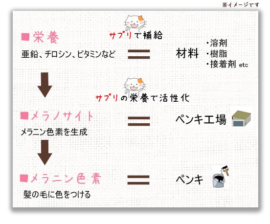 f:id:kousuke_inui:20190213133709p:plain