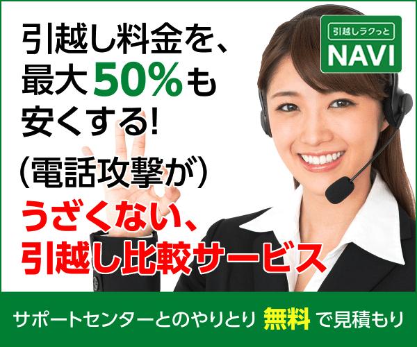f:id:kousuke_inui:20190217134816j:plain