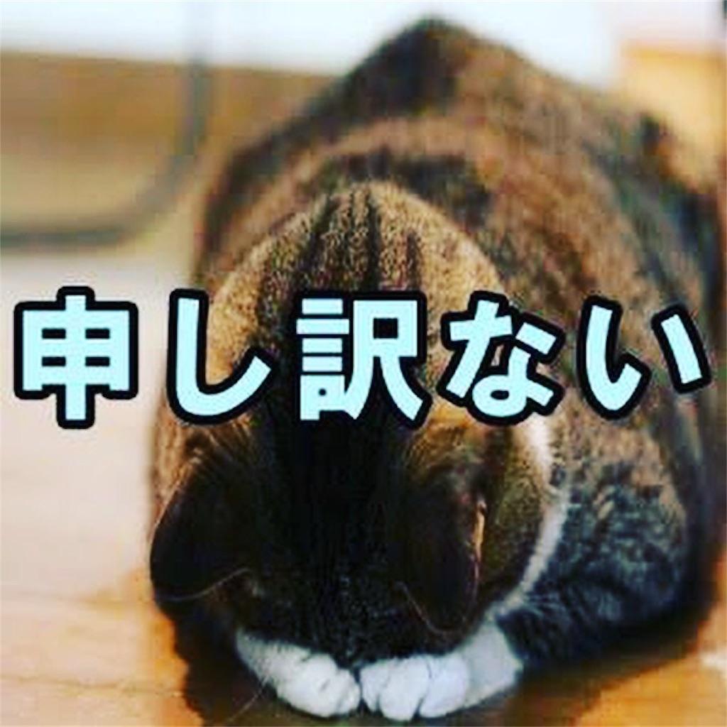 f:id:koutamiyagi:20180628095941j:image