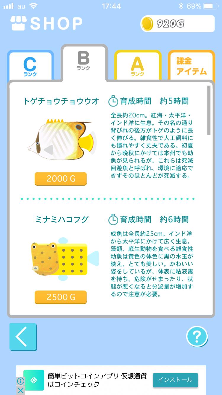 f:id:koutamurakami0819:20180127151006p:image