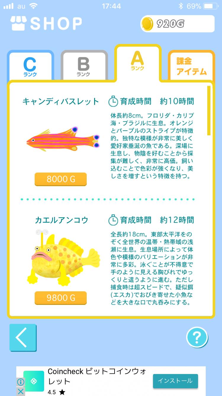 f:id:koutamurakami0819:20180127151012p:image