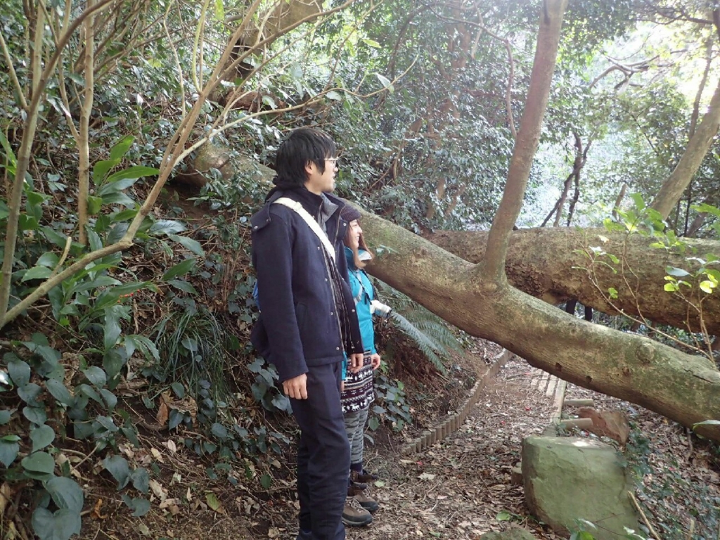 f:id:koutaro9007:20161225223205j:plain