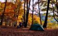 [KTM][690DUKE][バイクのある風景][紅葉][キャンプ][キャンプツーリング]  秋の紅葉キャンプツーリング!(岩倉ダムキャンプ場)