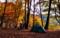 秋の紅葉キャンプツーリング!(岩倉ダムキャンプ場)