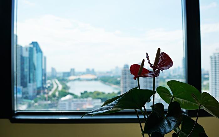 シェラトン・グランデ・スクンヴィットの部屋からの眺め