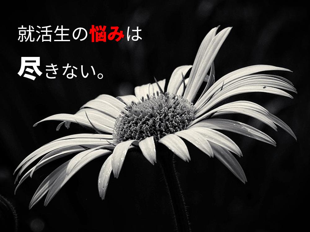f:id:koya-0263:20170216151806p:plain