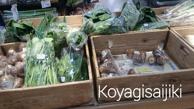f:id:koyagi-saijiki:20170206231420j:image