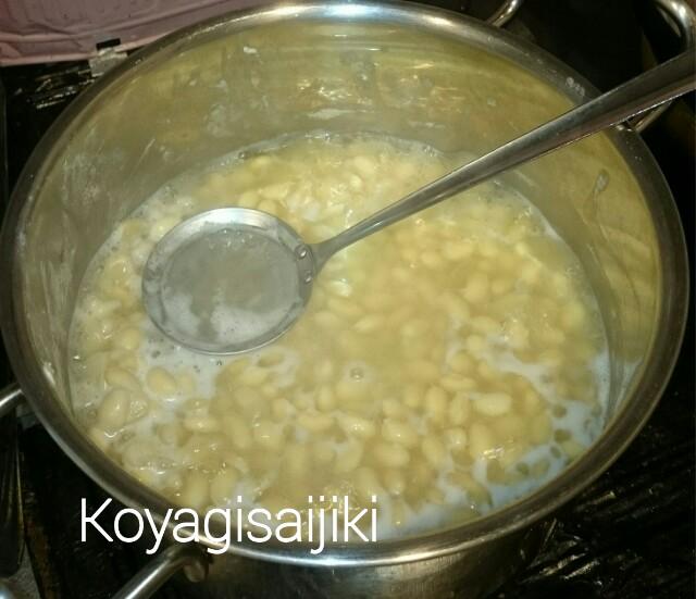 f:id:koyagi-saijiki:20170224213710j:image