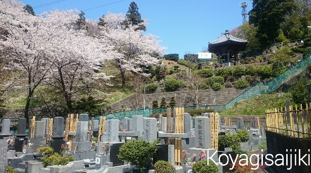 f:id:koyagi-saijiki:20170415172538j:image