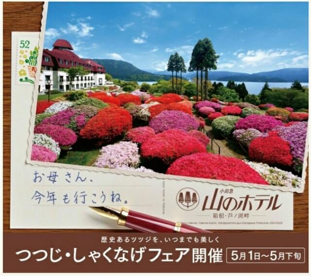 f:id:koyagi-saijiki:20170501170859j:image