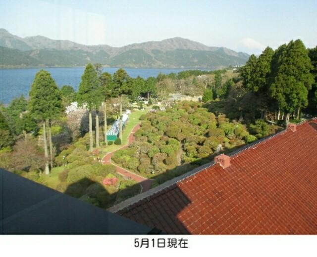 f:id:koyagi-saijiki:20170501171528j:image
