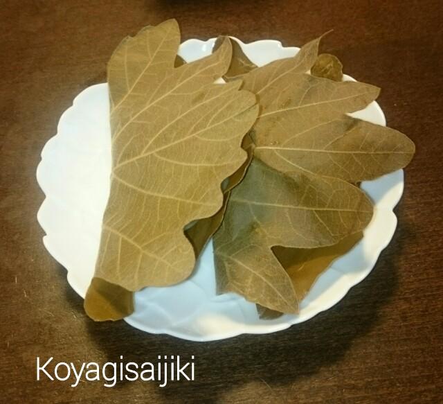 f:id:koyagi-saijiki:20170505155007j:image