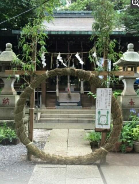 f:id:koyagi-saijiki:20170625164122j:image