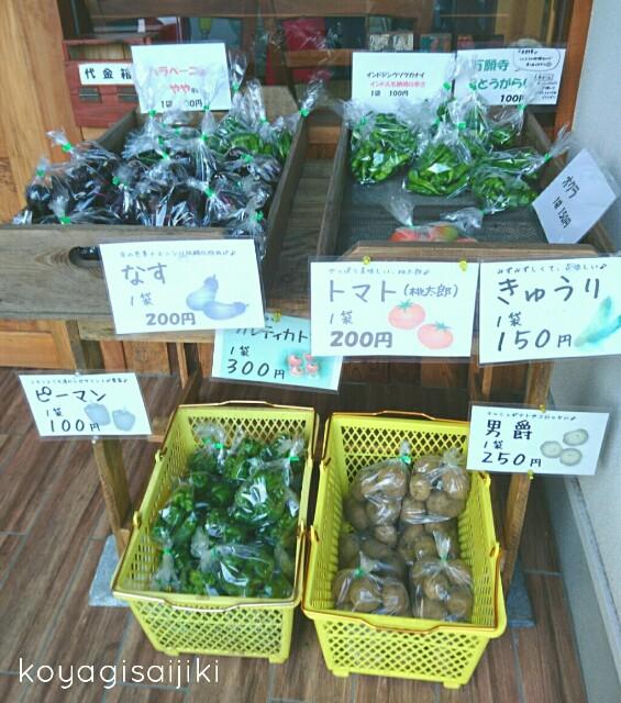 f:id:koyagi-saijiki:20170821231917j:image