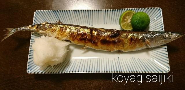 f:id:koyagi-saijiki:20170930191636j:image