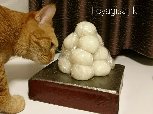f:id:koyagi-saijiki:20171004230445j:image