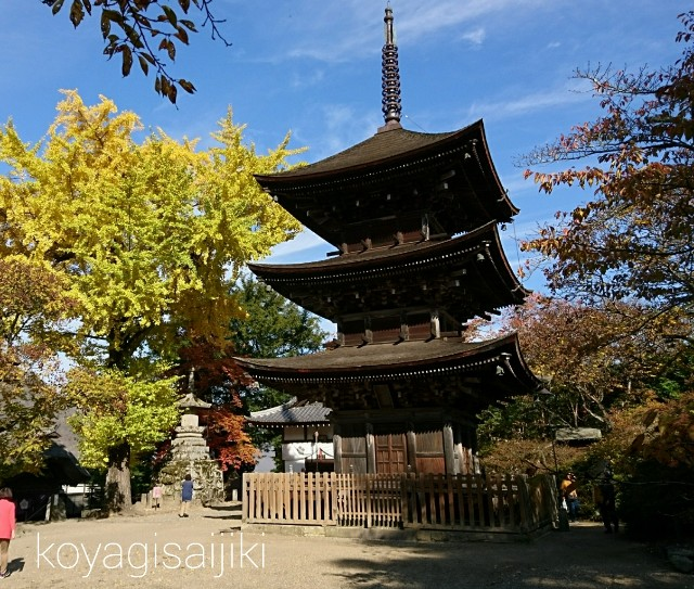 f:id:koyagi-saijiki:20171103144112j:image