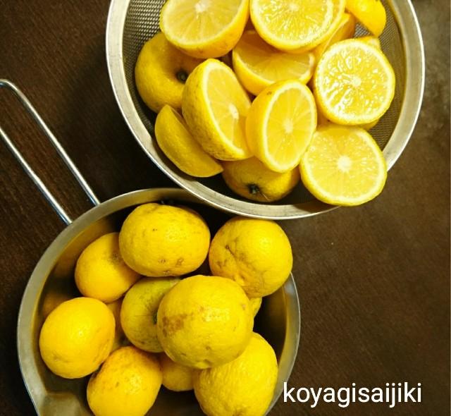 f:id:koyagi-saijiki:20171127095623j:image