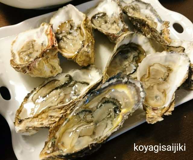 f:id:koyagi-saijiki:20171219143154j:image