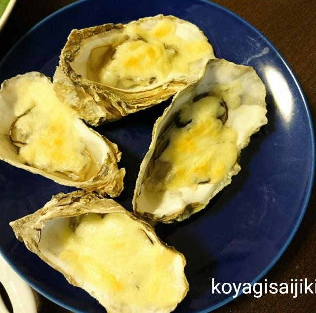 f:id:koyagi-saijiki:20171219193712j:image