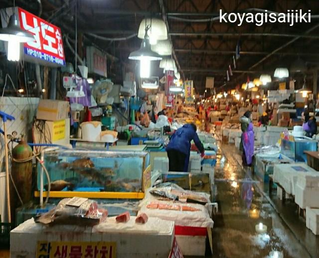 f:id:koyagi-saijiki:20180106162007j:image