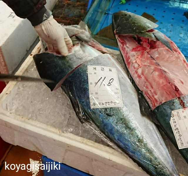 f:id:koyagi-saijiki:20180106162952j:image