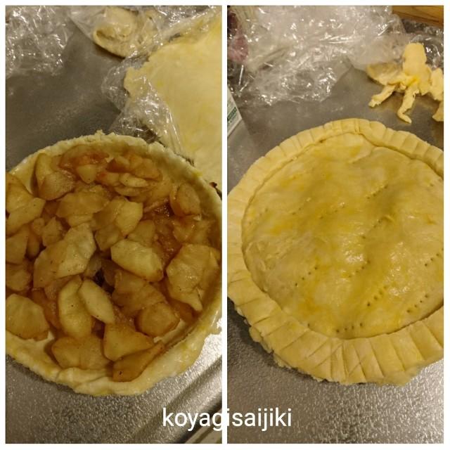 f:id:koyagi-saijiki:20180212182821j:image