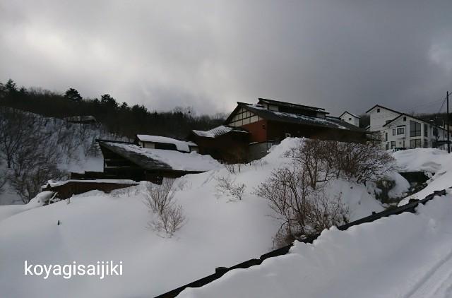f:id:koyagi-saijiki:20180221154105j:image